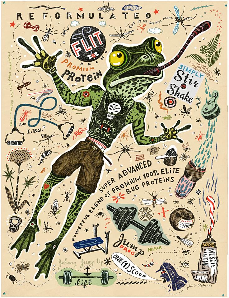 Frogfolio & Aesop's