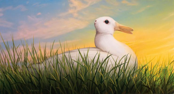 Duck/Rabbit Illusion for Nautilus